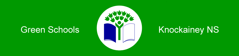 Knockainey Green Schools